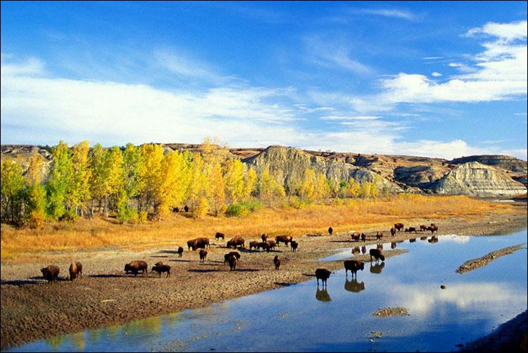 Неповторимая романтика дикого Запада (штат Северная Дакота)