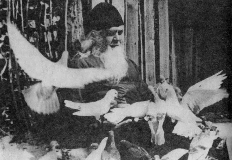 Дню прославления прп. Амфилохия Почаевского посвящается. Почаевские старцы