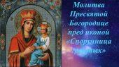 """Память иконы Божией Матери """"Споручница грешных"""""""