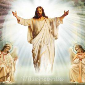 Сын Человеческий врачует наши раны