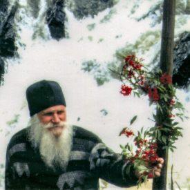 Димитрий Почаевский. Схимник и регент