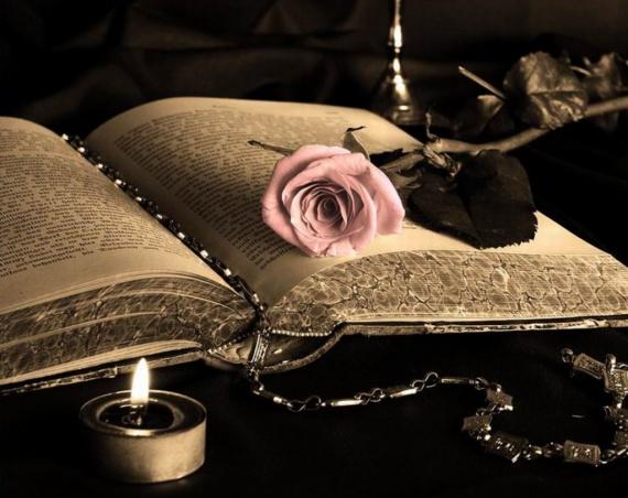 Сегодня — Всемирный День писателя. Живое слово